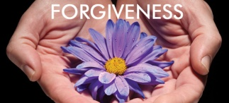 louise hay italia perdono